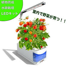 private vegetable garden room water culture nature plant vegetables upbringing kit private vegetable garden kit water