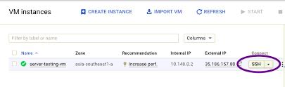 Hosting multiple websites on Single Google Cloud Compute Engine