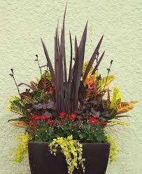Container Garden Design Cool Decorating Ideas