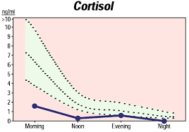 Adrenal Fatigue Causes Low Cortisol Levels Adrenal Fatigue
