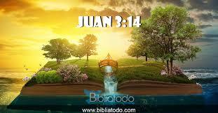 Juan 3:14 SBMN - Como levantó Moisés la serpiente en el desierto, así será  levantado el hijo del hombre,