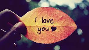 I Love You Background Hd Wallpapers 34846 Baltana