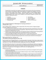 16 Internal Audit Resume E Cide Com Work Plan Sample Enriquegastelo