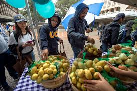 uci to mark national food day with first free farmers market donations to on cus pantry