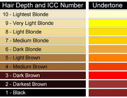 Bleach Hair Time Chart How To Get Rid Of Orange Hair From Highlights