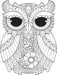 Small Picture Adult coloring pages fat owl ColoringStar