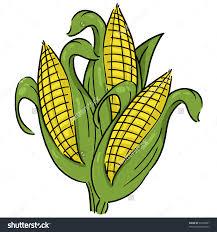 ear of corn clipart. Plain Corn And Ear Of Corn Clipart K