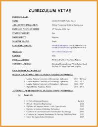 Curriculum Vitae Template Word Simple 17 Cv Format In Word Doc