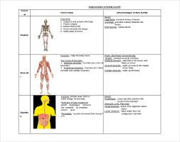 Body Systems Chart Human Body System Chart Magdalene Project Org