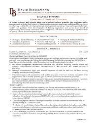 Executive Summary Resume Summary On A Resume Executive Summary