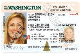 License Are One Drivers We America