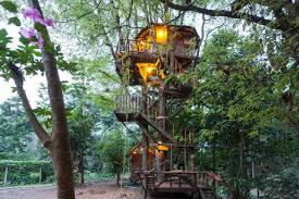 Itu0027s Time You Lived In A Treehouse For 13 A Night U2013 Tim WilliamsTreehouse Byron Bay