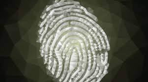 How To Read A Dna Fingerprint Chart What Is A Dna Fingerprint Facts Yourgenome Org