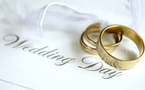 Free Wedding Pictures Wallpaper 1920x1200 8814