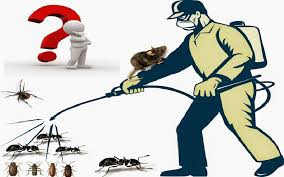 Image result for reviews you can find of the local pest control companies