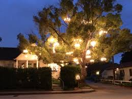 the chandelier tree real in l a