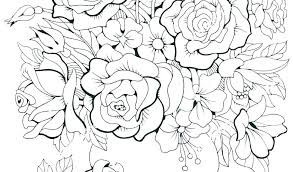 Tropical Flower Coloring Pages Antiatominfo