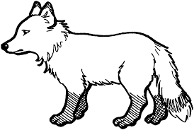 Small Picture Free Fox Coloring Pages