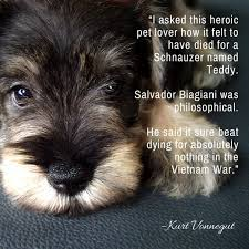 Dog Quotes We Rounded Up The Best Of The Best Custom Dog Death Quotes