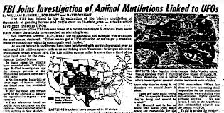Image result for cattle mutilation