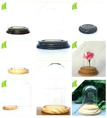 glass dome with base glass cloche with wood base succulent terrarium ring glass dome cloche ring glass dome with base