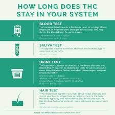 How Long Do Drugs Stay In Your System Chart How Long Does Thc Stay In Your System Medical Marijuana Inc