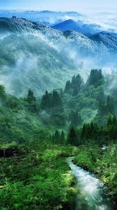 Nature Green Phone Wallpapers ...