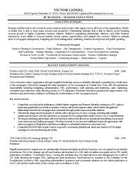 Examples Of Resumes Example For Resume With Summary