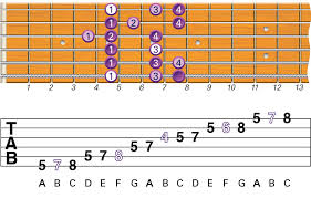 All The Guitar Scales Chart What Are The Best Beginner Guitar Scales To Learn