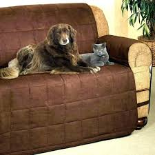 pet cover for leather couch best dog owners sofa covers good furniture pets protection