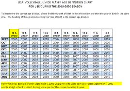 Agechart Halo Volleyball