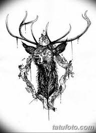 эскиз тату олень 23022019 077 Sketch Tattoo Deer Tatufotocom
