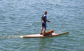 kaholo stand up paddleboard build your own boat