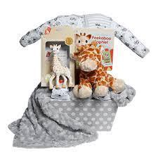 sophie the giraffe baby gift basket