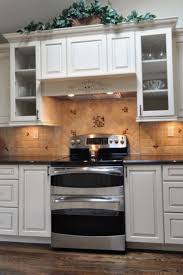 elegant cabinets lighting kitchen. All Kitchen Cabinets Elegant Basic Awesome Cabinet  Lighting Fresh Elegant Cabinets Lighting Kitchen T