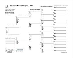 Ancestry Diagram Ancestry Diagram Blank Family Pedigree Chart Threestrands Co