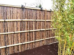 Small Picture Exterior Design Awesome Bamboo Fencing Style For Inspiring Garden