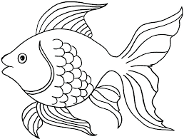 Small Fish Template Fish Templates For Rainbow T The Collage Resource Pack Kennyyoung