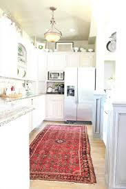 I have been wanting a rug in my kitchen for a long time BUT I had a harder  time convincing my husband. He said it would get too dirty, ...