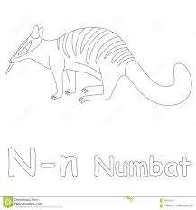 Small Picture N For Numbat Coloring Page Stock Illustration Image 39701561
