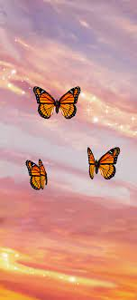 Butterfly Sunset Aesthetic' iPhone 11 ...