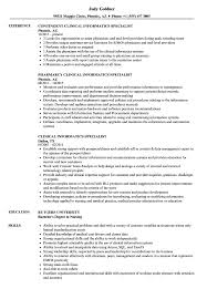 sample clinical nurse specialist resume clinical informatics specialist resume samples velvet jobs