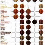 Hair Dye Rusk Hair Color Education Rusk Hair Color Chart