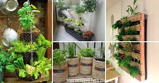 diy herbs container homedesigninspired