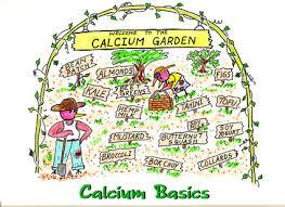 Calcium Content Of Foods Chart Vegetarians In Paradise Calcium Basics Charts Vegan