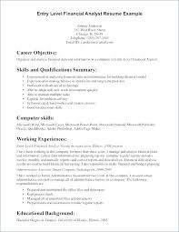 Resume Summary Statement Examples Magnificent Example Resume Summary Statement Resume Summary Examples Entry Level