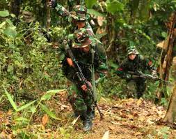 solrs during an insurgency and jungle warfare drill of indian and indonesian armies
