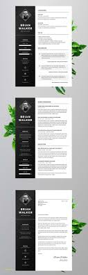Free Resume Templates For Word 2007 And 50 Creative Resume Templates