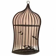 Decorative metal bird cage sculpture with birds and a flower wall hanging mywireart 5 out of 5 stars (659) $ 69.50. Decorative Bird Houses Cages Free Shipping Over 35 Wayfair