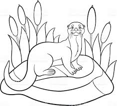 Small Picture Coloring Pages Little Cute Otter Stands On The Stone stock vector